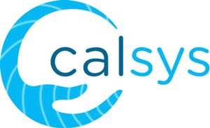 calsys electronic design